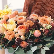 求婚玫瑰花不同数量代表的意思