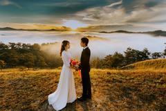 男牛女虎婚姻是否相配 男属牛女属虎的婚姻怎么样