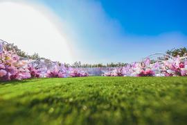 花嫁丽舍草坪