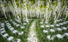 草坪婚礼和室内婚礼哪个贵