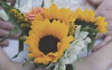 结婚捧花用什么花合适
