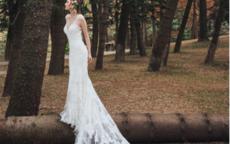 十二星座的专属水晶婚纱