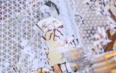 订婚买蛋糕是什么意思 订婚吃蛋糕的寓意