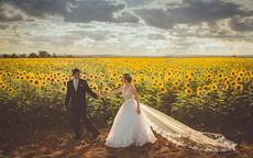婚礼纪制作电子请柬是免费的吗